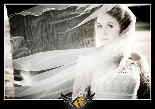 Meg has a bridal photo take as her veil blows over her face in the wind in round rock, tx