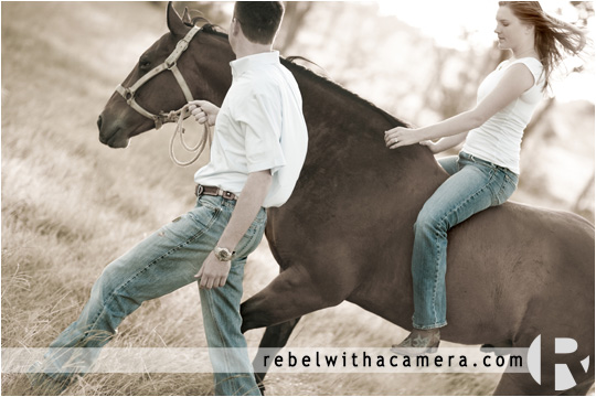 Austin Cattle ranch engagement photographs on a Kobe Beef ranch near Bastrop.